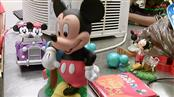 MICKEY MOUSE COLLECTIBLES